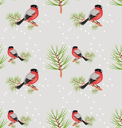 Bullfinch seamless background vector