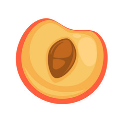 half of tasty peach vector image vector image