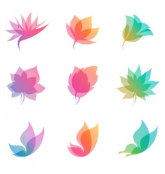 pastel nature elements for design vector image vector image