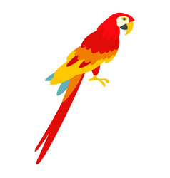 Scarlet macaws icon isolated vector