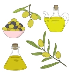 Bottle of oil and the branch of the olive tree vector