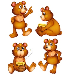 Four brown bears vector image
