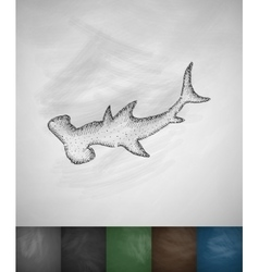 Hammerhead shark icon vector