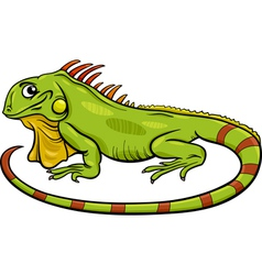 Iguana animal cartoon vector