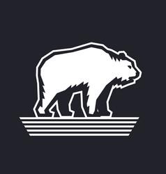 bear logo design template vector image vector image