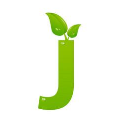 green eco letter j illiustration vector image