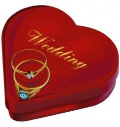 wedding rings and box vector image
