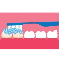 Brushing your teeth with toothpaste vector image vector image