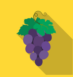 Bunch of wine grapes icon in flate style isolated vector