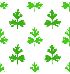 Coriander herb chinese parsley seamless pattern vector
