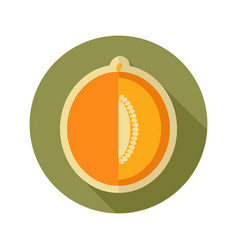 Melon flat icon fruit vector
