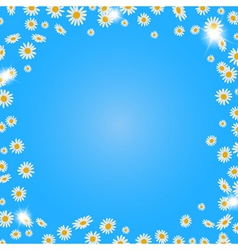 Summer daisies background vector image