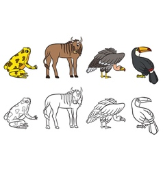 Aninals set vulture toucan frog gnu vector