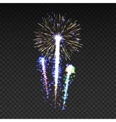 Festive patterned fireworks isolated bursting in vector