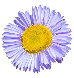 A big flower vector image vector image