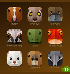 animal faces for app icons-set 19 vector image