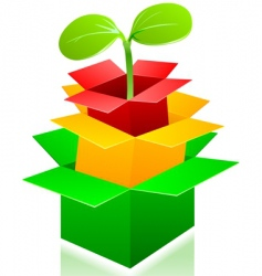 box sprouting vector image vector image