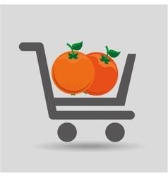 E-shopping fresh orange fruit design vector