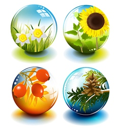 Four seasons spheres vector image