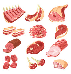 Fresh meat cuts colorful collection on vector