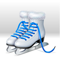 A pair of ice skates vector image vector image