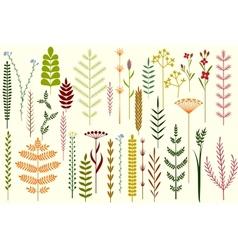 Set of summer herbs vector image vector image