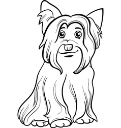 Yorkshire terrier dog coloring book vector
