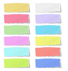 Colour oblong paper tears isolated on white vector