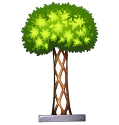 A landscaping plant vector