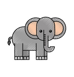 African elephant isolated icon vector