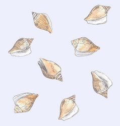 Dog conch wing shell hand drawn sketch sea vector
