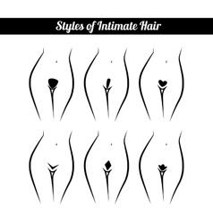 Scheme of hair removal bikini zone vector
