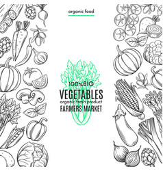 template borders with hand drawn vegetables vector image vector image