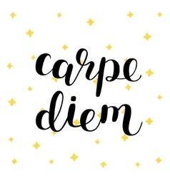 Carpe diem seize the day vector