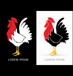 cock standing vector image