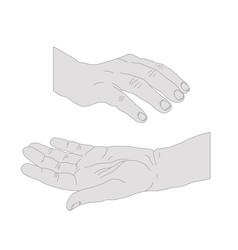 drawn hands opened vector image