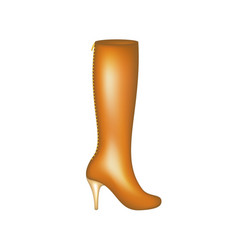 Female high boot in brown design vector