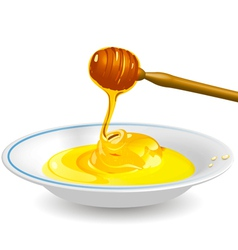 fluid honey vector image vector image