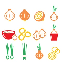 Onion spring onions colorful icons set vector image