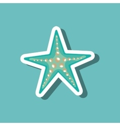 Sea star blue beach design vector