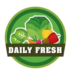 Farm fresh design organic food icon colorful vector