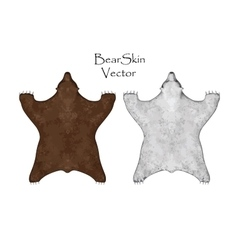 Bear pelt big brown and white  hunting trophy vector