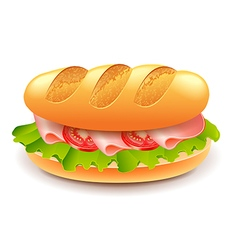 French sandwich isolated on white vector image