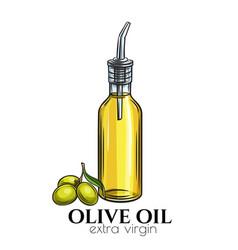 olive oil glass bottle dispenser vector image