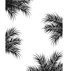 tropical design with black palm leaves and plants vector image