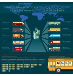 Public transportation ingographics Buses vector image