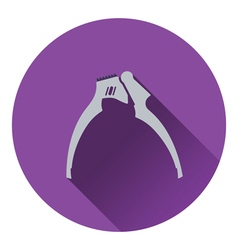 Garlic press icon vector