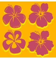 Hibiscus collection in red vector