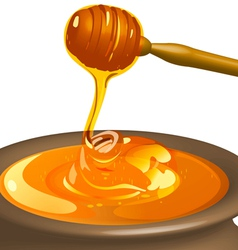 Honey with wooden spoon vector