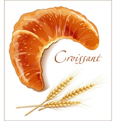 Croissant bakery products vector